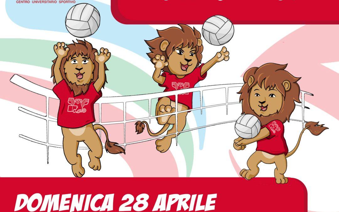 Festa Volley S3 – Cus Venezia